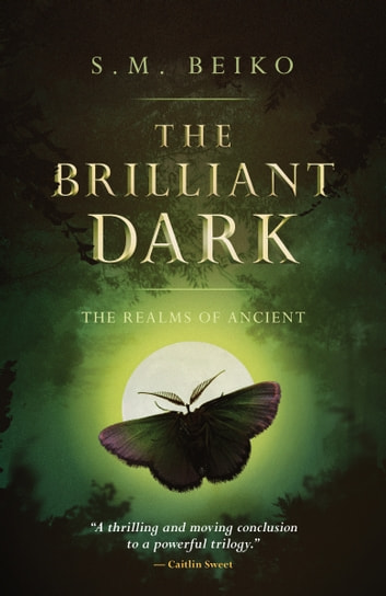 The Brilliant Dark - The Realms of Ancient, Book 3 ebook by S.M. Beiko