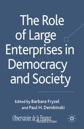 The Role of Large Enterprises in Democracy and Society ebook by