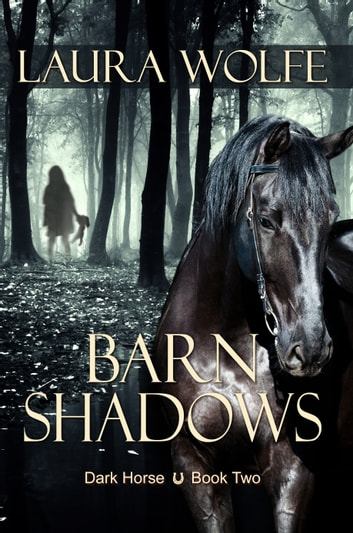 Barn Shadows ebook by Laura Wolfe
