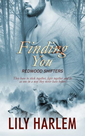Finding You ebook by Lily Harlem