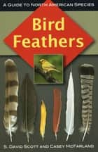 Bird Feathers - A Guide to North American Species ebook by