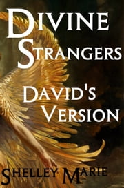 Divine Strangers - David's Version ebook by Shelley Marie