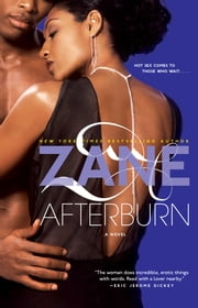 Zane's Afterburn - A Novel ebook by Zane