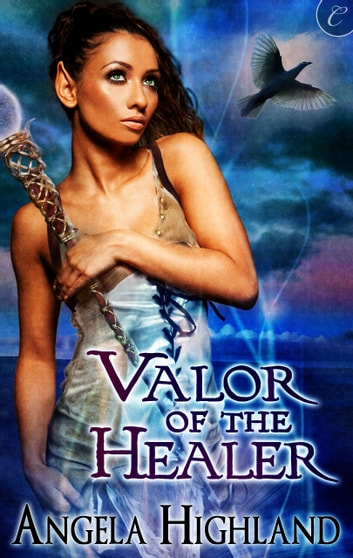 Valor of the Healer ebook by Angela Highland
