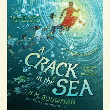 A Crack in the Sea audiobook by H. M. Bouwman