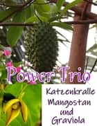 Power Trio ebook by Alina Frey