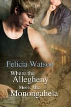 Where the Allegheny Meets the Monongahela ebook by Felicia Watson