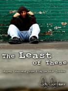 The Least of These: Lessons Learned from Kids on the Street ebook by Ron Ruthruff