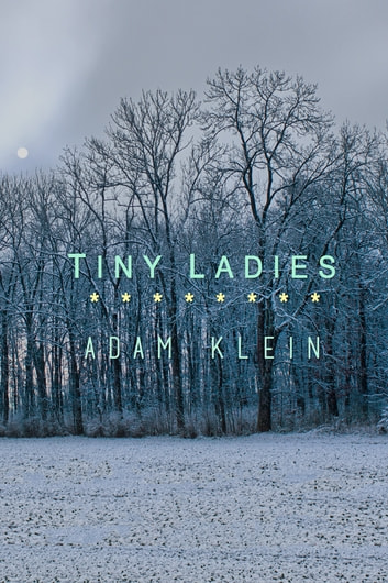 Tiny Ladies ebook by Adam Klein