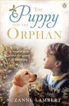 The Puppy and the Orphan ebook by Suzanne Lambert