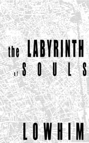 The Labyrinth of Souls ebook by Nelson Lowhim