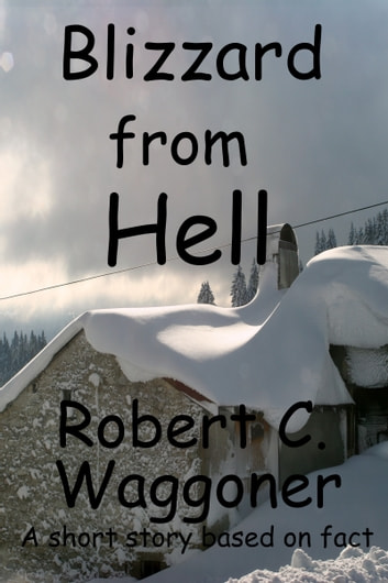 Blizzard from Hell ebook by Robert C. Waggoner
