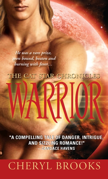 Warrior ebook by Cheryl Brooks