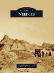 Needles ebook by James M. Conkle,Linda Fitzpatrick