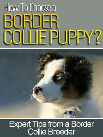 How To Choose a Border Collie Puppy - Expert Tips From a Former Border Collie Breeder ebook by Luther Gordon