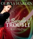 A Bundle of Trouble ebook by Olivia Hardin