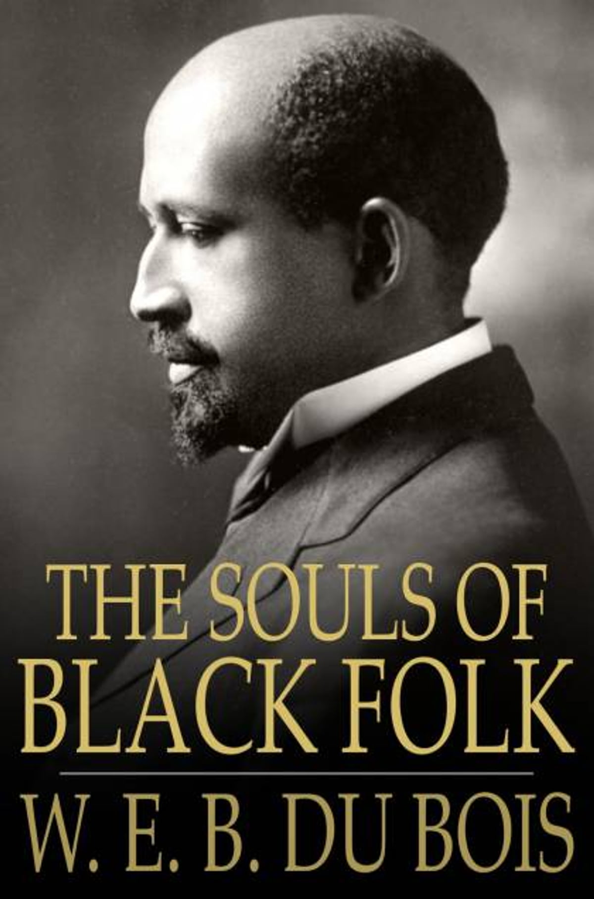the souls of black folk essays web dubois essay a history of beef between black writers artists help essay writing the alchemist