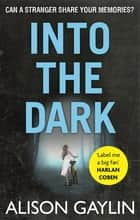 Into the Dark ebook by Alison Gaylin