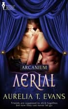 Aerial ebook by Aurelia T. Evans