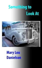 Something To Look At ebook by Mary Lou Danielson