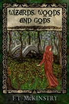 Wizards, Woods and Gods - Short Stories ebook by F.T. McKinstry
