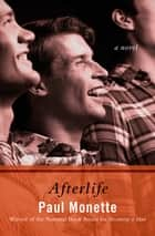 Afterlife - A Novel ebook by Paul Monette