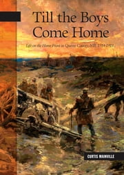 Till the Boys Come Home - Life on the Home Front in Queens County, NB, 1914-1918 ebook by Curtis Mainville
