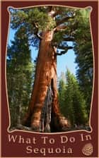 What To Do In Sequoia and Kings Canyon ebook by Richard Hauser