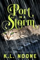 Port in the Storm ebook by