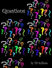 Questions ebook by TA Sullivan