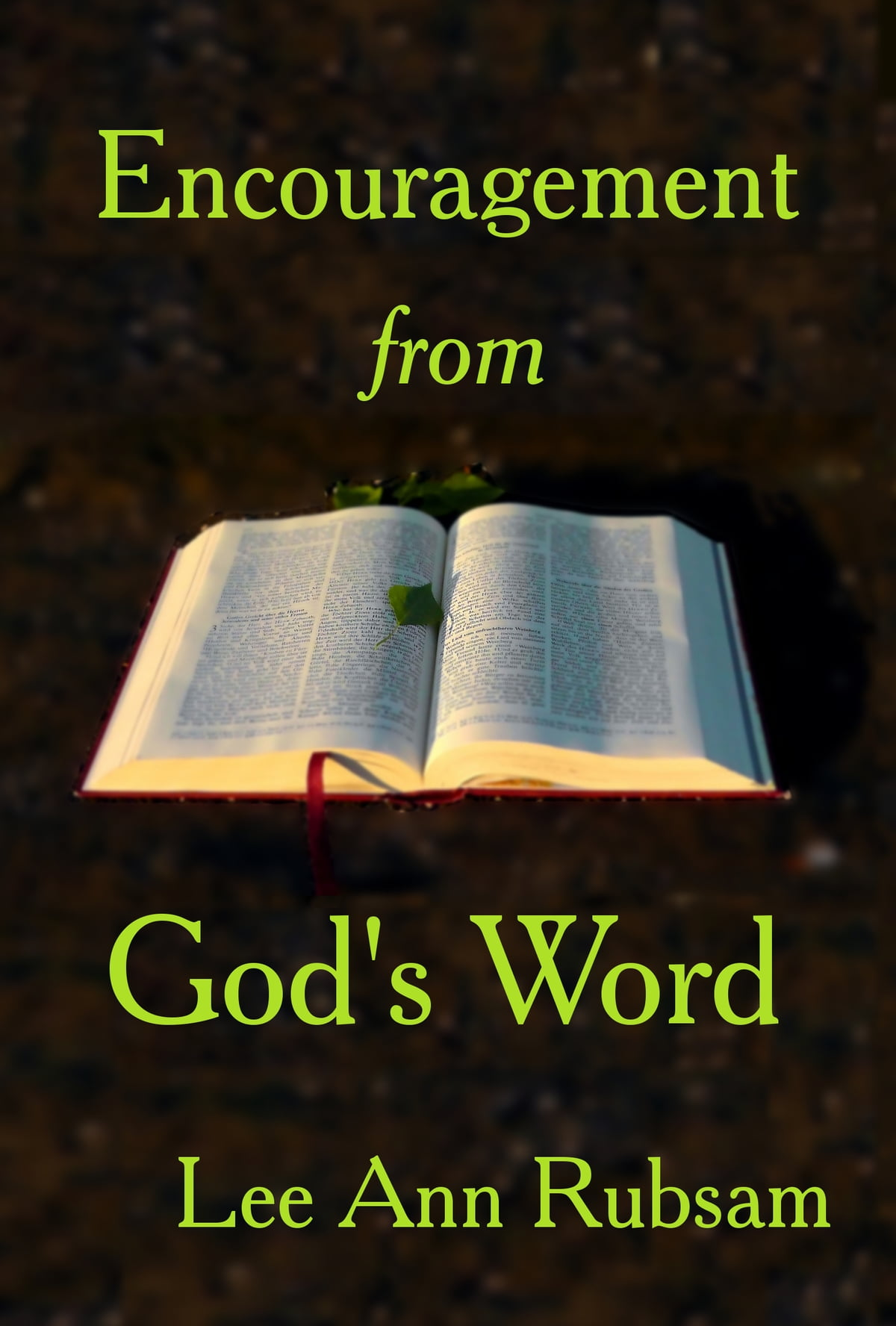 Encouragement from God's Word ebook by Lee Ann Rubsam - Rakuten Kobo