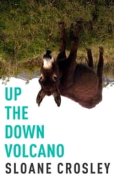 Up the Down Volcano ebook by Sloane Crosley