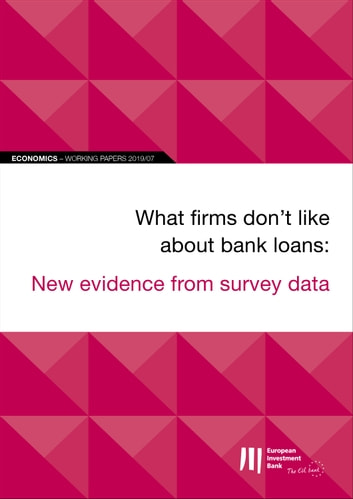 EIB Working Papers 2019/07 - What firms don't like about bank loans: New evidence from survey data ebook by