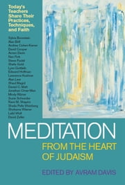 Meditation from the Heart of Judaism: Today's Teachers Share Their Practices, Techniques, and Faith ebook by Avram Davis