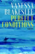Perfect Conditions ebook by Vanessa Blakeslee