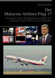 Der Malaysia-Airlines-Flug 17