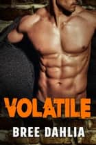 Volatile - Enemies to Lovers Romance ebook by Bree Dahlia