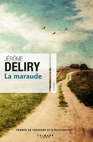 La Maraude ebook by Jérôme Deliry