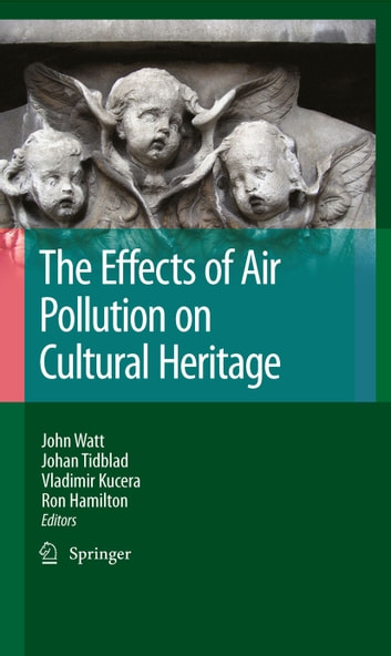 The Effects of Air Pollution on Cultural Heritage ebook by