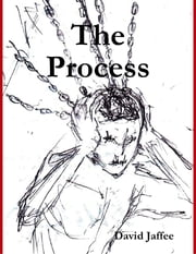 The Process ebook by David Jaffee