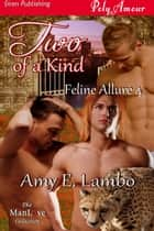 Two of a Kind ebook by Amy E. Lambo