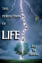 The Perfection of Life: A Journey into Neolithic Mind ebook by Jay M Horne