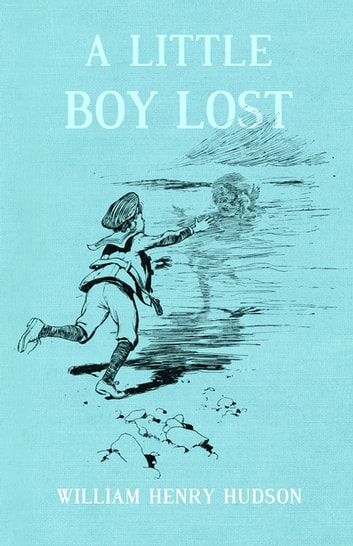 A Little Boy Lost Ebook By William Henry Hudson 9781473346642