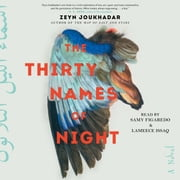 The Thirty Names of Night - A Novel audiobook by Zeyn Joukhadar