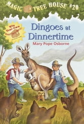 Dingoes at Dinnertime ebook by Mary Pope Osborne