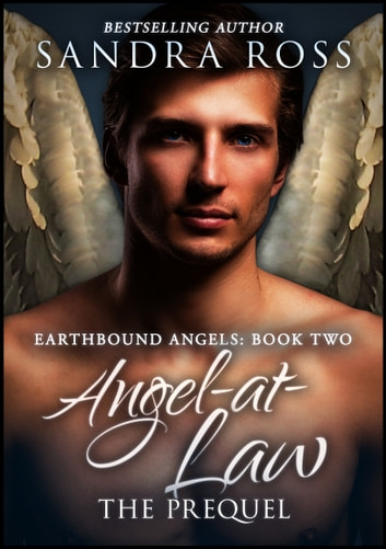 Ravyns Fall (Heaven and Hell Book 1)