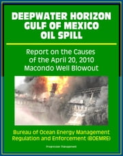 Deepwater Horizon Gulf of Mexico Oil Spill: Report on the Causes of the April 20, 2010 Macondo Well Blowout ebook by Progressive Management