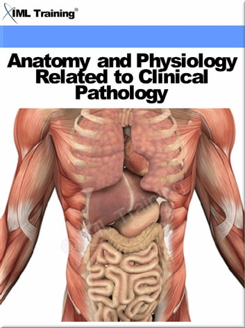 Anatomy and Physiology Related to Clinical Pathology (Human Body ...
