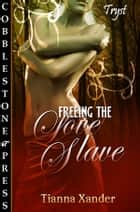 Freeing the Love Slave ebook by Tianna Xander