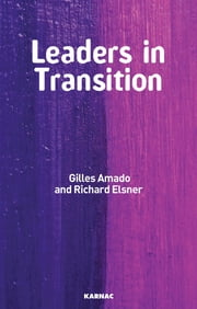 Leaders in Transition - The Tensions at Work as New Leaders Take Charge ebook by Gilles Amado,Richard Elsner